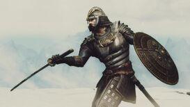 Cavaliere delle Blade