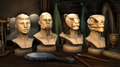 Cosmetic Pack Adornments.png