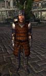 TESIV Guard Anvil 1