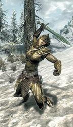Thalmor Warrior