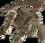 Драконья кость