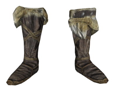 File:Hide boots.png