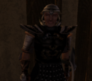 Imperial Steel Armor