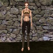 Простые штаны (Morrowind) 17 (жен)