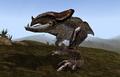 Kagouti (Morrowind).png