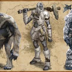 Grafika koncepcyjna Ogra, Giganta i Gigantki z Wrothgaru