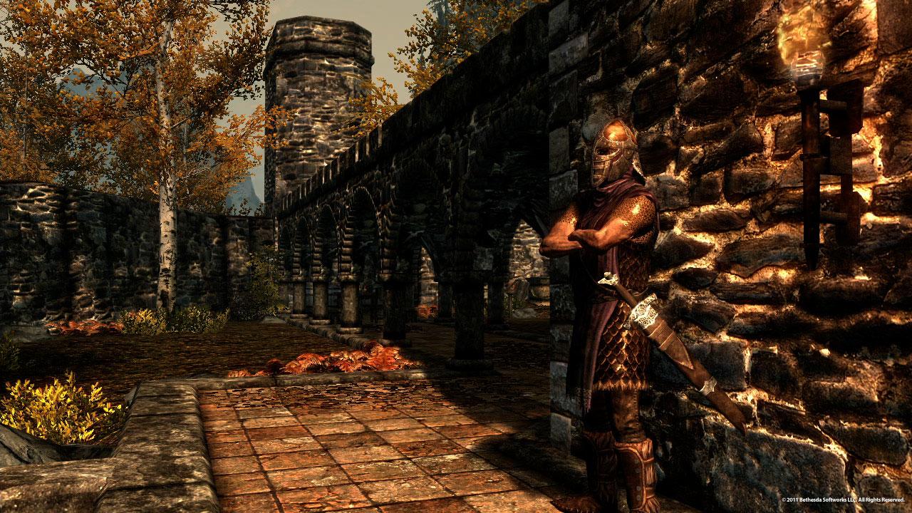 Stadtwache (Skyrim) | Elder Scrolls Wiki | FANDOM powered by Wikia
