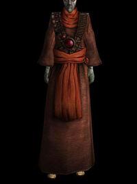 Gewöhnliches Gewand (common robe 03 b)