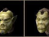 Ork (Morrowind)