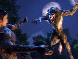 Werwolf (Fertigkeitslinie)
