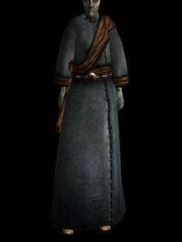 Gewöhnliches Gewand (common robe 03 a)