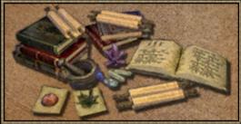 Magier (Morrowind)