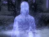 Jiub (Dawnguard)