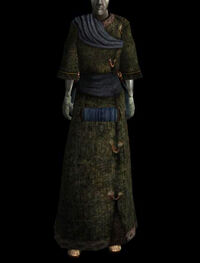 Gewöhnliches Gewand (common robe 05 c)