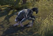WerwolfGangOnline