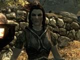 Begleiter (Skyrim)