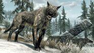 03-ice-wolf