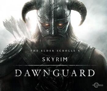 Skyrim DLC Dawnguard