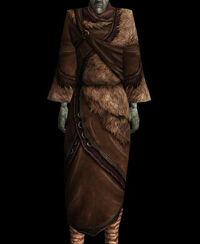 Gewöhnliches Gewand (BM Nordic01 Robe)