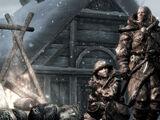 Skaal (Dragonborn)