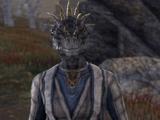 Deekonus