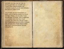 Tagebuch des Erzkanonikers 2