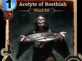 Acolyte of Boethiah