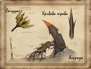 Рослини Мертвих земель концепт