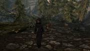 Ардвен і собака