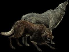Вовк (істота)