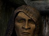 Неласар (Skyrim)