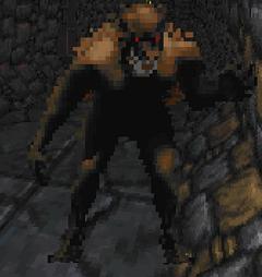 Вовкулака (Daggerfall)