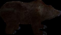Ведмідь (Bloodmoon)