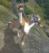 Гірський лев атакує