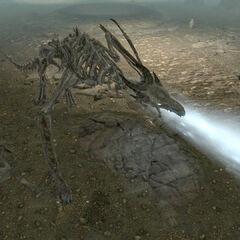 Дракон-скелет