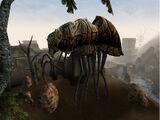 Сілт страйдер (Morrowind)