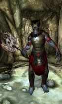 Медрік (Oblivion)