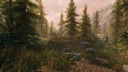 The Elder Scrolls V Skyrim Path