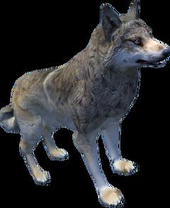 Oblivion Wolf