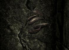 Ведмежі кігті