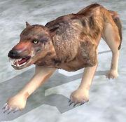 Чумний вовк