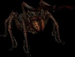 Морозний павук