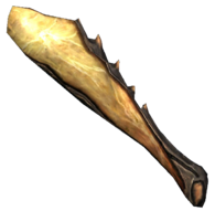 Нога попільного коника