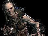 Відьмокрук (Skyrim)