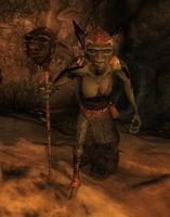Гоблін-шаман (Oblivion)