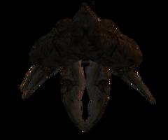 Багнокраб (Morrowind)