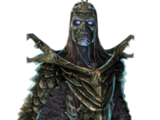 Драконячий жрець (Skyrim)