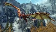 Благородний дракон кружляє