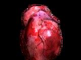 Людське серце (Skyrim)