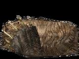 Шкура ведмедя (Skyrim)